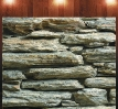 Mozaika - Dziki Mur - cięcie jednostronne_1